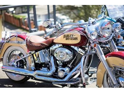 Potrošni dijelovi za Harley-Davidson